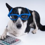 Fred Buehrer's Under-Utilized Pet Tax Deductions